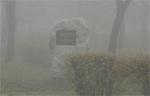 A múlt a jelen ködében