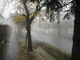 XV. utca
