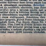 Bérbeadó nyaralók 1905. 222.. szám
