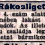 1906. 250. sz.
