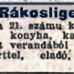 1906. 270. sz.