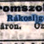 1906. 41. sz.