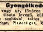 1910 246 szam