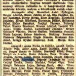 1910 81 szam
