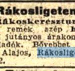 1911 238 szam