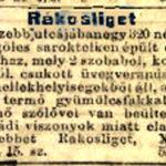 1912 55 szam
