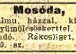 1913 88 szam