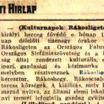 1924 163 szam