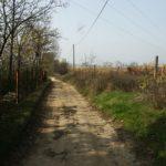 Rákosliget Forrásmajori út