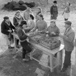 Szüret a szőlőhegyen az 1960-as években